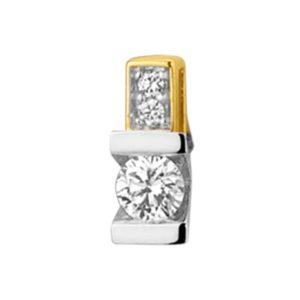 14 krt bicolor gouden Hanger diamant 0.16 ct. model. 4208022