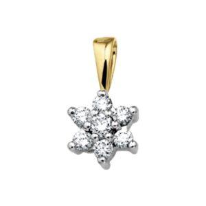 14 krt bicolor gouden Hanger ster diamant 0.24ct H P1 model. 4206801
