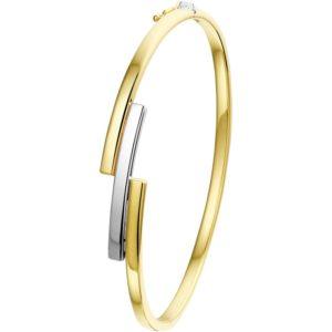 14 krt bicolor gouden Slavenband scharnier 9