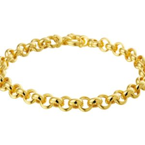 14 krt geelgouden Armband Jasseron 7