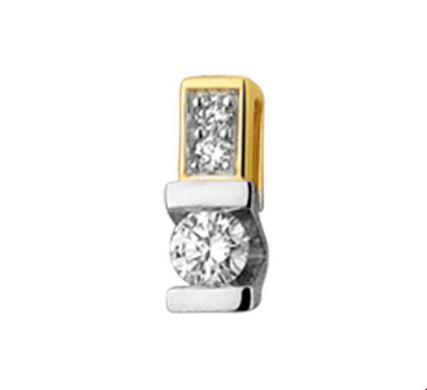 14 krt bicolor gouden dames hanger diamant 0.06ct h si glanzend  van het sieradenmerk BloomGold model 2284434208020
