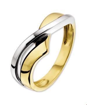 14 krt bicolor gouden dames ring glanzend  van het sieradenmerk BloomGold model 2284434205854