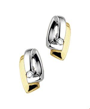 14 krt geelgouden dames oorknoppen diamant 0.04ct (2x0.02) h p1   van het sieradenmerk BloomGold model 2284434011002